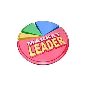 market-leader-300-on-white